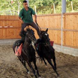 Loves Horses - a cavallo alla Corte del Gallo