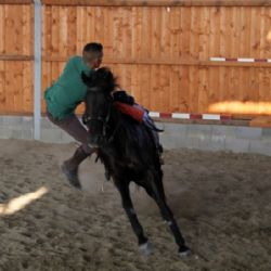 Loves Horses - a cavallo alla Corte del Gallo