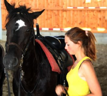 Corsi di monta Loves Horses